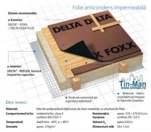 delta foxx timisoara tm