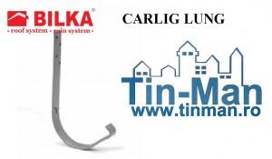 4 CARLIG CAPRIOR  jgheaburi Timisoara